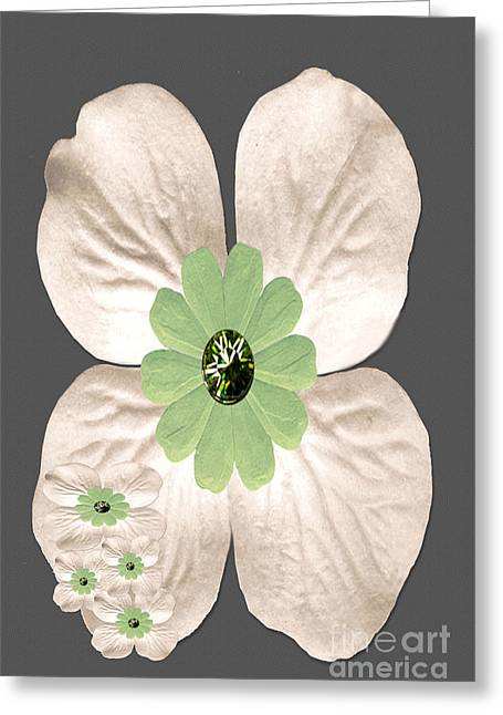 Installation Art Greeting Cards - Dogwood Blossoms Greeting Card by Tina M Wenger