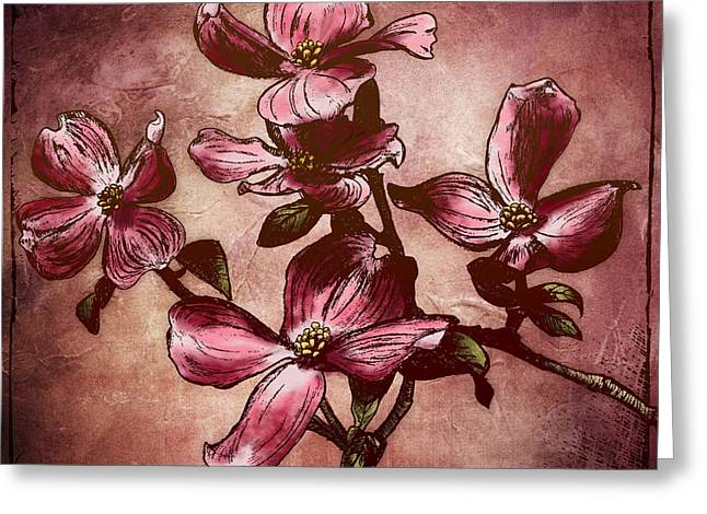 Stucco Greeting Cards - Dogwood Branch I Greeting Card by April Moen