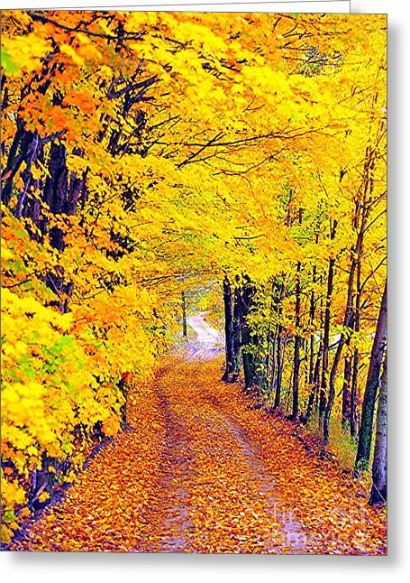 Fallen Leaves Greeting Cards - Doing the Autumn Twist Greeting Card by Terri Gostola