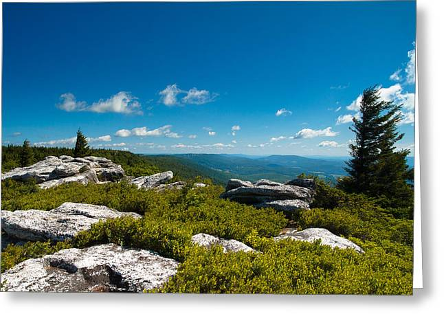 West Virginia Greeting Cards - Dolly Sods Greeting Card by Shane Holsclaw