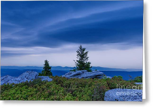 Dolly Sods Wilderness Greeting Cards - Dolly Sods Wilderness D30017556 Greeting Card by Kevin Funk