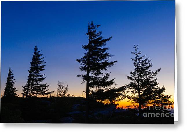 Horizontal Greeting Cards - Dolly Sods Wilderness D30017789 Greeting Card by Kevin Funk