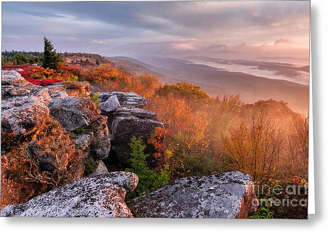 Silhouette Greeting Cards - Dolly Sods Wilderness D30018344 Greeting Card by Kevin Funk