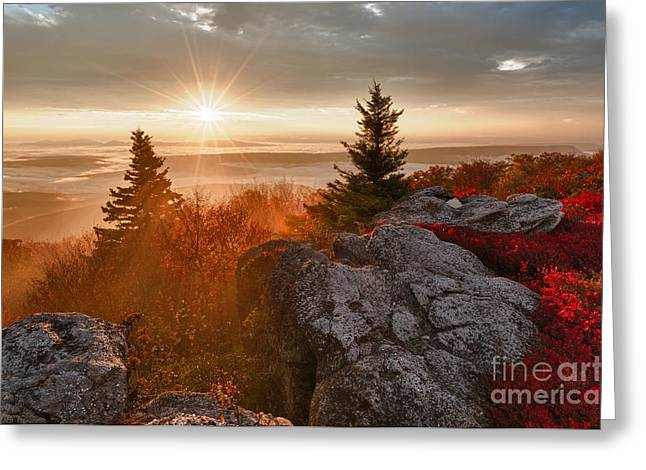 Dolly Sods Wilderness Greeting Cards - Dolly Sods Wilderness D30018415 Greeting Card by Kevin Funk
