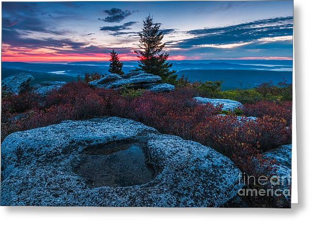 National Forest Greeting Cards - Dolly Sods Wilderness D30019392 Greeting Card by Kevin Funk