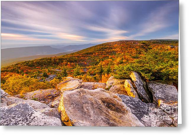 Monongahela National Forest Greeting Cards - Dolly Sods Wilderness D30019853 Greeting Card by Kevin Funk