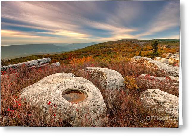 Dolly Sods Wilderness Greeting Cards - Dolly Sods Wilderness D30019870 Greeting Card by Kevin Funk