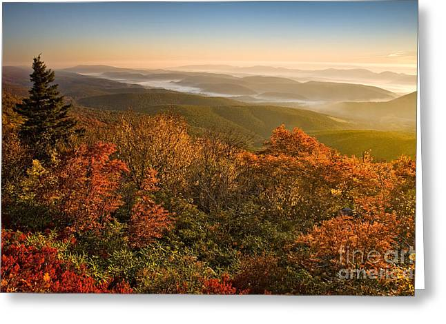 Dolly Sods Wilderness Greeting Cards - Dolly Sods Wilderness D70S12473 Greeting Card by Kevin Funk