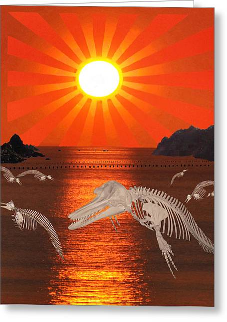 Fleeting Mixed Media Greeting Cards - Dolphin Bay Taiji Cove Greeting Card by Eric Kempson