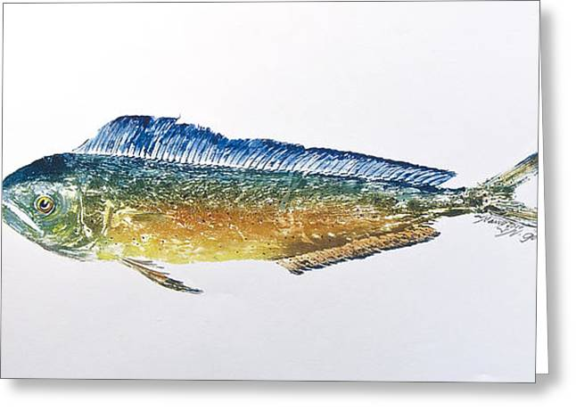 Nancy Gorr Greeting Cards - Dolphin Fish Greeting Card by Nancy Gorr