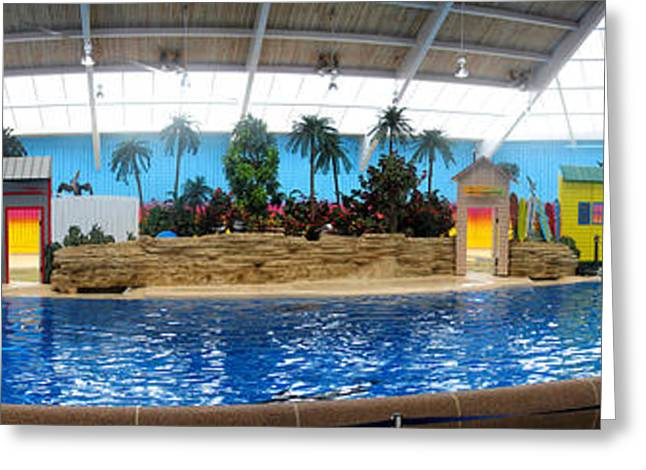 Ocean Mammals Greeting Cards - Dolphin House Brookfield Zoo Digital Art Panorama Greeting Card by Thomas Woolworth
