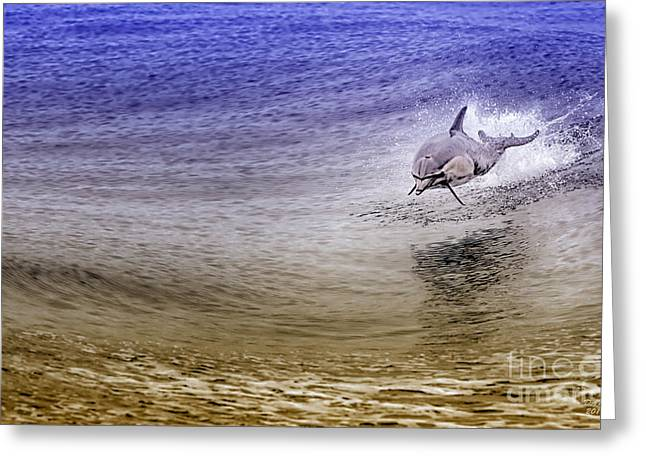 Top Seller Greeting Cards - Dolphin Jumping Greeting Card by David Millenheft
