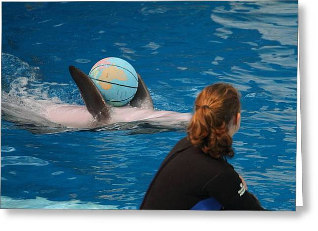 Inner Greeting Cards - Dolphin Show - National Aquarium in Baltimore MD - 1212156 Greeting Card by DC Photographer