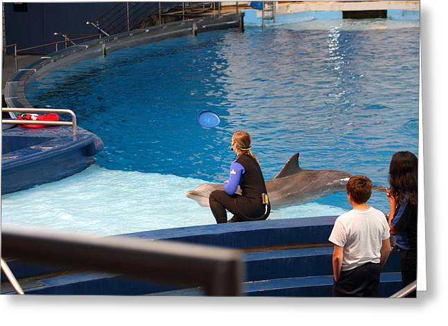 Dolphin Show - National Aquarium In Baltimore Md - 1212221 Greeting Card by DC Photographer