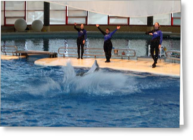 Dolphin Show - National Aquarium in Baltimore MD - 1212278 Greeting Card by DC Photographer