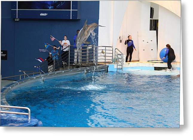 Show Greeting Cards - Dolphin Show - National Aquarium in Baltimore MD - 121273 Greeting Card by DC Photographer