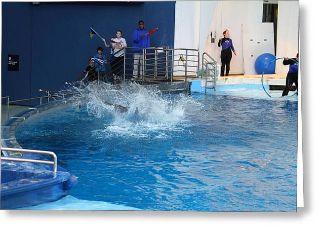 Dolphin Show - National Aquarium In Baltimore Md - 121293 Greeting Card by DC Photographer