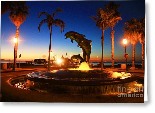 Stearns Wharf Greeting Cards - Dolphins at Dawn Greeting Card by Dave Donaldson