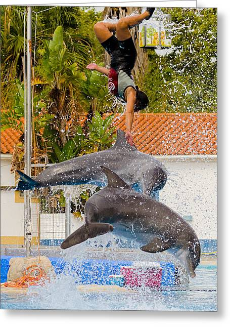 Consumerproduct Photographs Greeting Cards - Dolphins jumping with the girl Greeting Card by Alexandre Martins