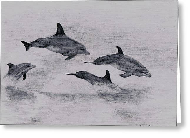 Lucy D Greeting Cards - Dolphins Greeting Card by Lucy D