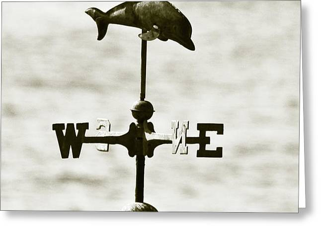 Dolphins Weathervane In Sepia Greeting Card by Ben and Raisa Gertsberg