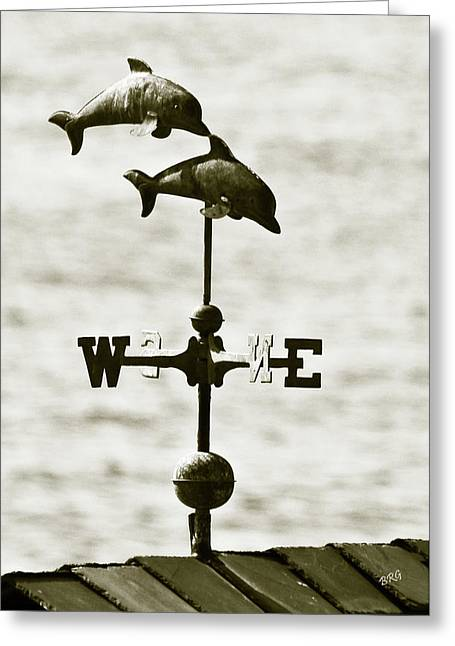 Wind Vane Greeting Cards - Dolphins Weathervane In Sepia Greeting Card by Ben and Raisa Gertsberg
