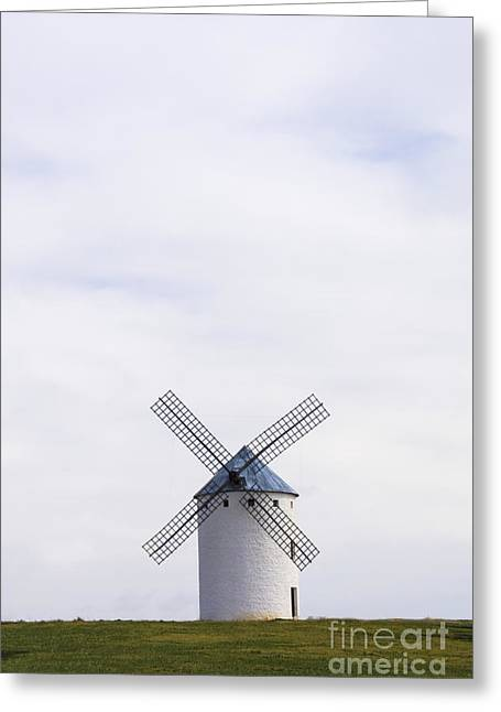 Quixote Greeting Cards - Don Quixote Nemesis Greeting Card by Margie Hurwich