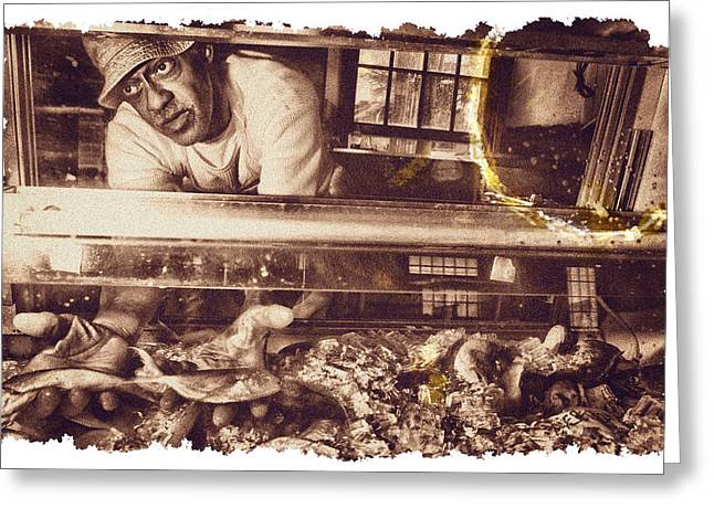 Monger Greeting Cards - Donald The Fish Monger Greeting Card by Tom Wenger