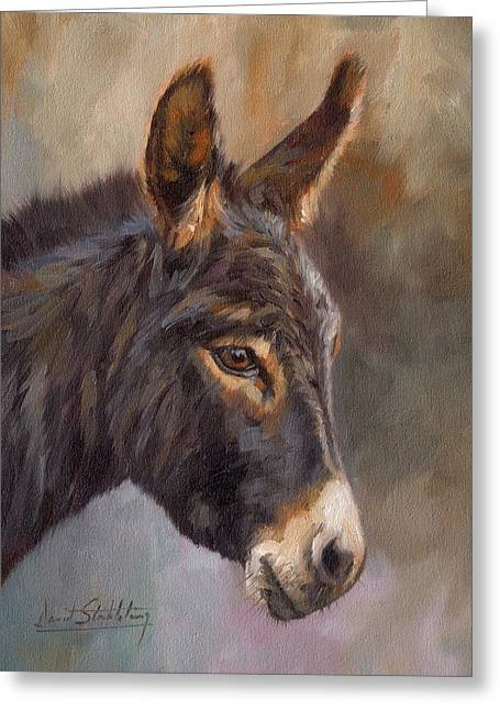 Ass Greeting Cards - Donkey Greeting Card by David Stribbling