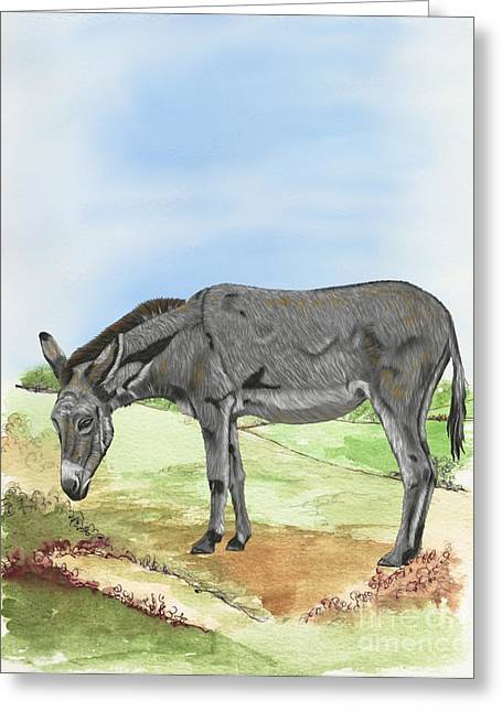 Donkey Mixed Media Greeting Cards - Donkey Greeting Card by Karen Sheltrown