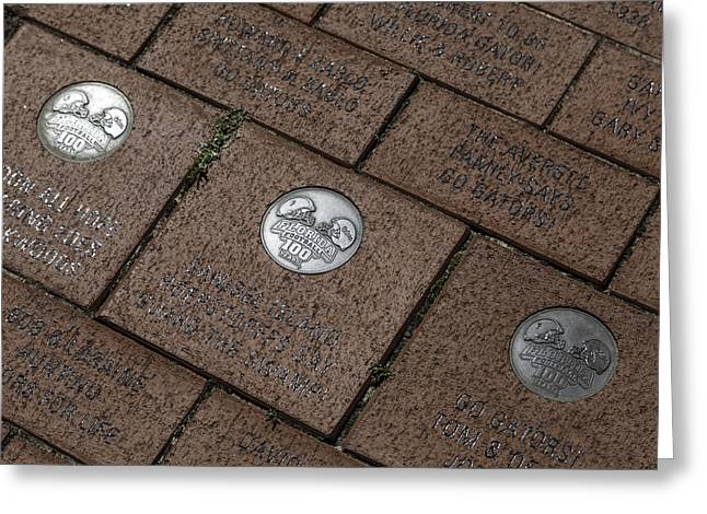 The Hills Greeting Cards - Donor Bricks Greeting Card by Lynn Palmer
