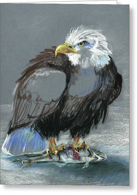 Bald Eagle Pastels Greeting Cards - Dont Even Think About It Greeting Card by Pat Oldham