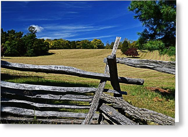 Split Rail Fence Greeting Cards - Dont Fence Me in Greeting Card by Bill Swartwout