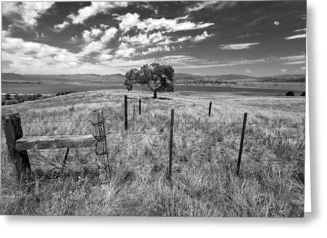 Prarie Greeting Cards - Dont Fence Me In - Black and White Greeting Card by Peter Tellone