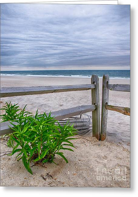 Split Rail Fence Greeting Cards - Dont Fence Me In Greeting Card by Mark Miller