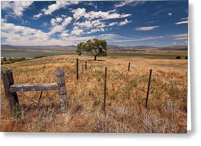 Prarie Greeting Cards - Dont Fence Me In Greeting Card by Peter Tellone
