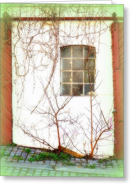 Temperament Greeting Cards - Dont Knock On My Window Greeting Card by Hilde Widerberg