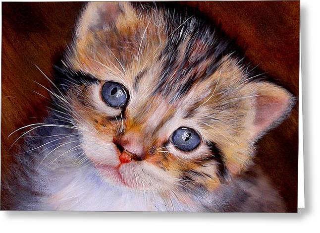Baby Kitten Art Drawings Greeting Cards - Dont Leave Me Behind Greeting Card by Caron Wiedrick