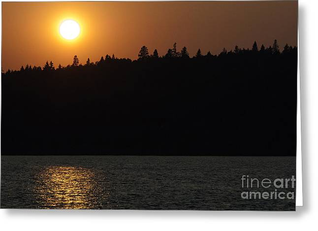 Dï¿¿r Greeting Cards - Dont Let The Sun Go Down On Me 2 Greeting Card by Bob Christopher