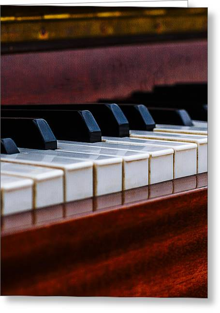 Reflex Greeting Cards - Dont Shoot The Pianist Vertical 1 Greeting Card by Alexander Senin