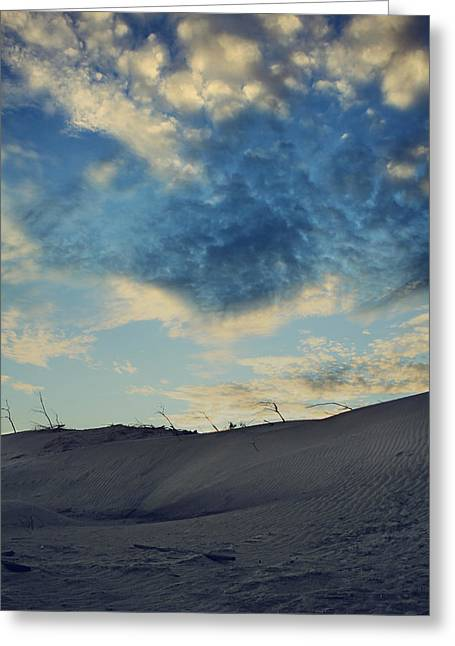 Desert Greeting Cards - Dont Tell Me Goodbye Greeting Card by Laurie Search