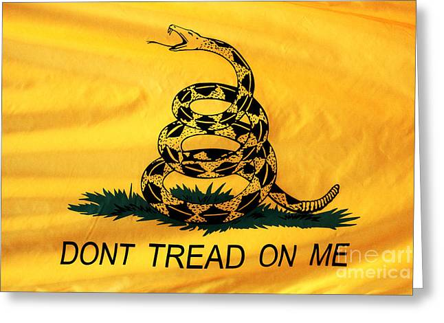Americana Pictures Greeting Cards - Dont Tread on Me Greeting Card by John Rizzuto
