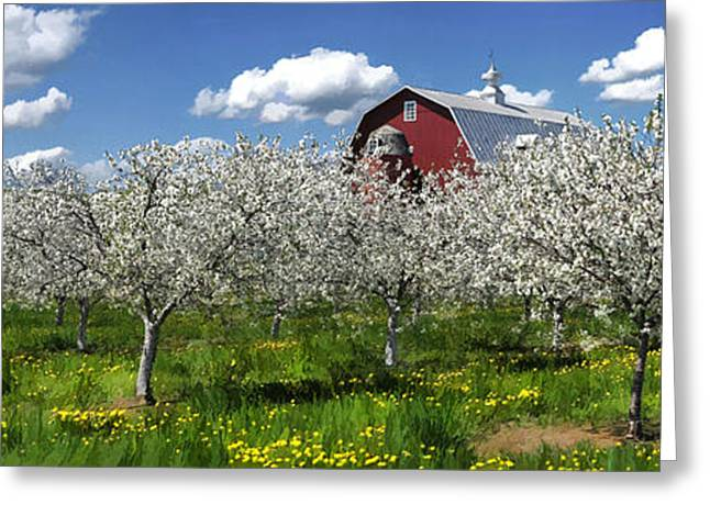 Door County Greeting Cards - Door County Cherry Blossoms Panorama Greeting Card by Christopher Arndt