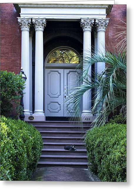 Deep River County Park Greeting Cards - Doorway with Cat Greeting Card by Diana Powell