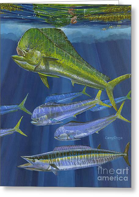 Dorado Rip Off0057 Greeting Card by Carey Chen