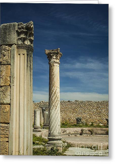 Caracalla Greeting Cards - Doric column at Volubilis in Morocco Greeting Card by Patricia Hofmeester