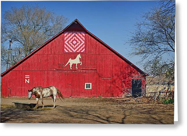 Painted Barn Quilt Greeting Cards - Double Bar N #1 Greeting Card by Nikolyn McDonald