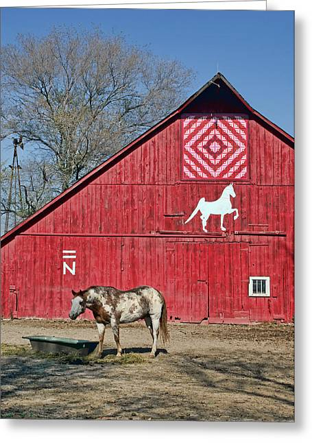 Painted Barn Quilt Greeting Cards - Double Bar N #2 Greeting Card by Nikolyn McDonald