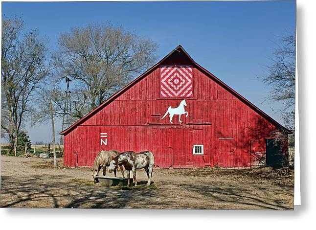Painted Barn Quilt Greeting Cards - Double Bar N #3 Greeting Card by Nikolyn McDonald