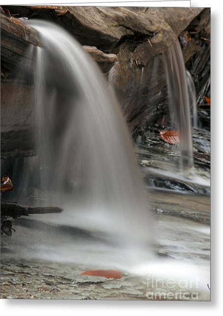 Environemtn Greeting Cards - Double Cascade Greeting Card by Darleen Stry